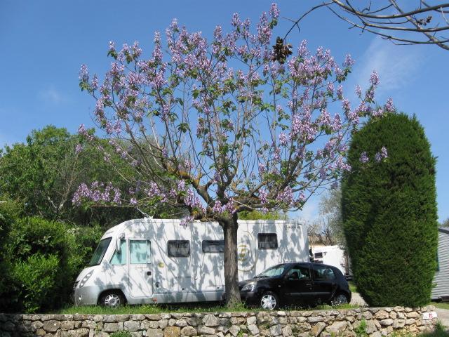Camping la Paoute, Grasse, Alpes-Maritimes