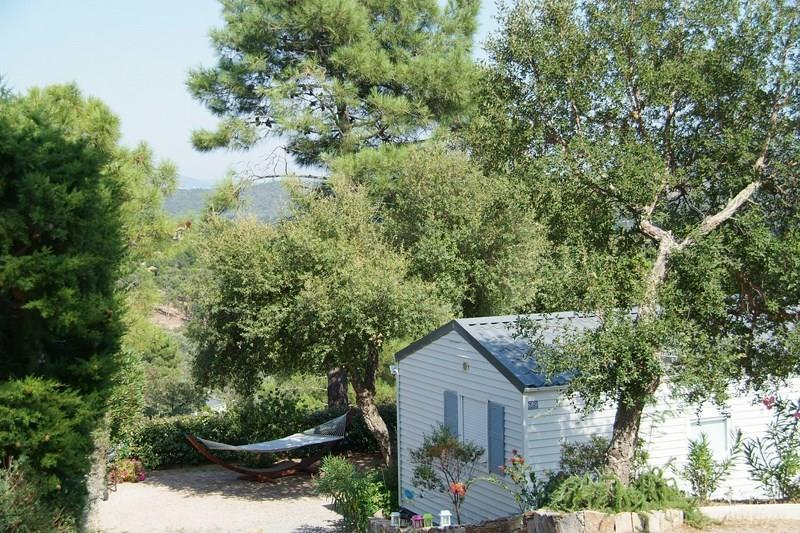 Camping Domaine de la Bergerie, Roquebrune-sur-Argens, Var