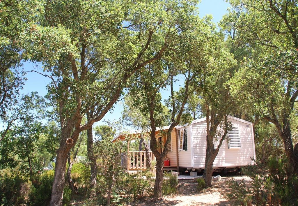 Location - Privilège Espace B - 2 Chambres - 33M² À 39M² - Camping Castel Domaine de la Bergerie