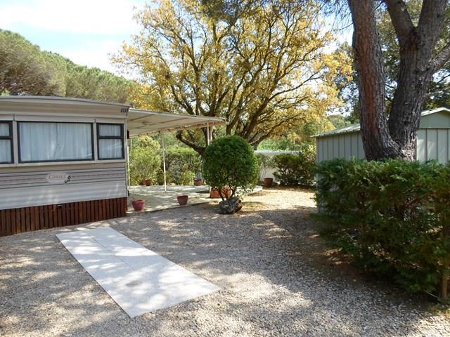 Location - Grand Eco D - 2 Chambres - Sans Climatisation - 29M² À 30M² - Camping Castel Domaine de la Bergerie