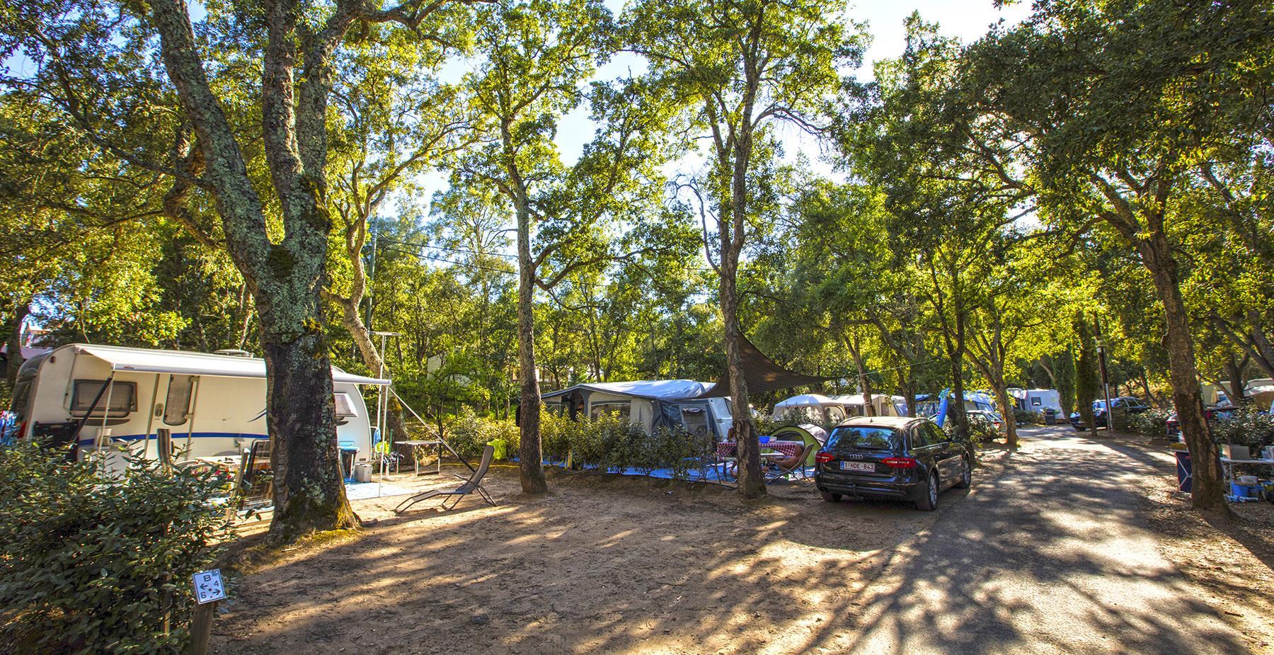 Emplacement - Emplacement Classique -80M² - Camping Castel Domaine de la Bergerie