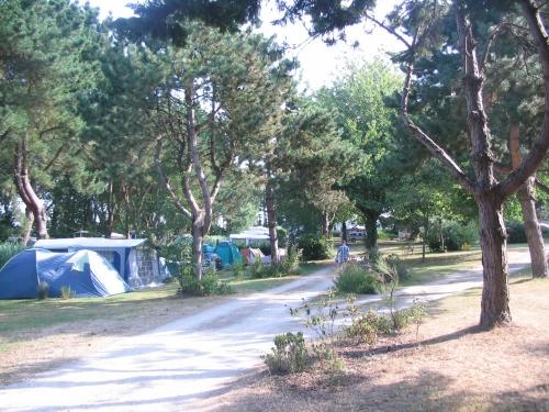 Emplacement - Forfait Confort (1 Tente, Caravane Ou Camping-Car / 1 Voiture / Électricité 10A) - Flower Camping Le Kergariou