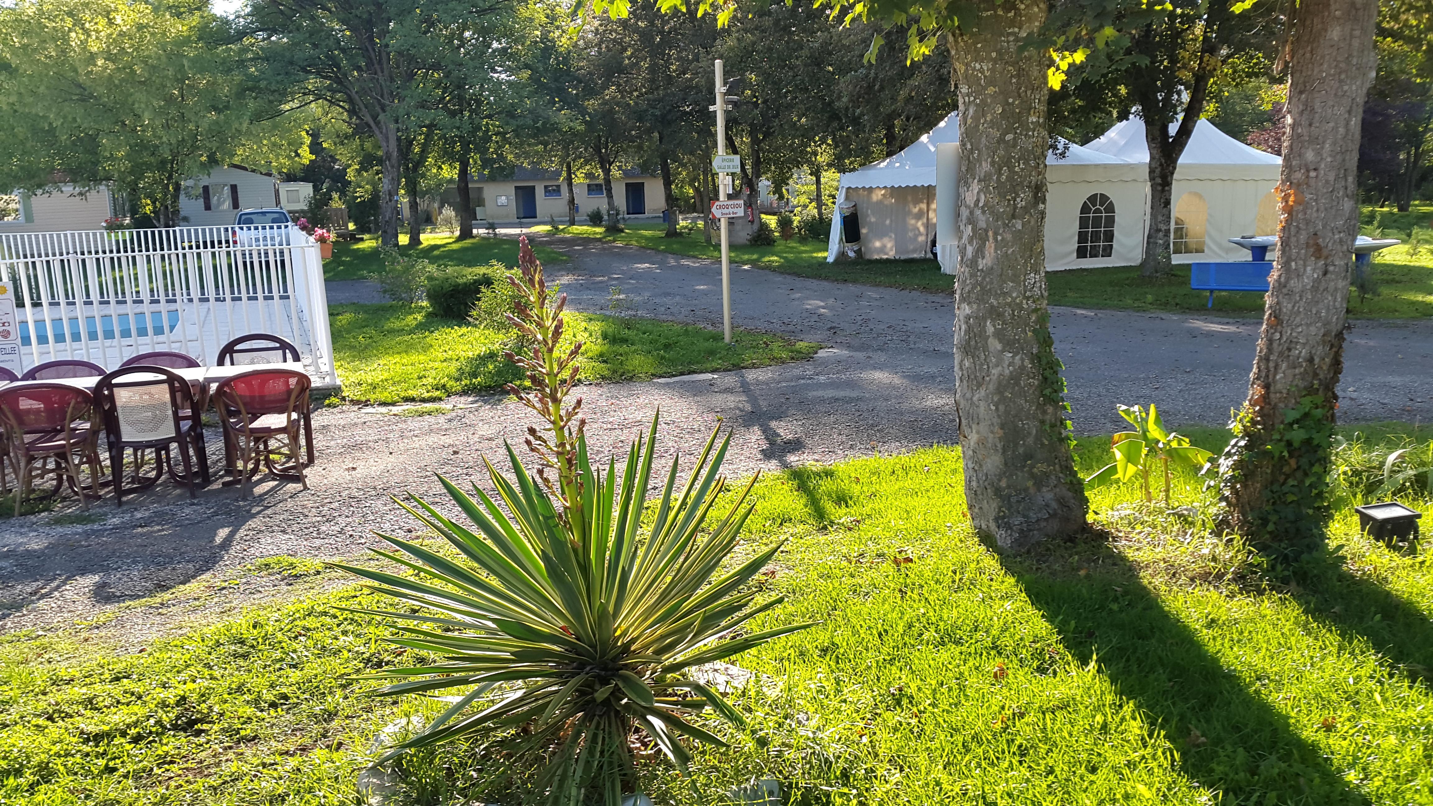 Camping les Rives du Céou, Saint-Chamarand, Lot