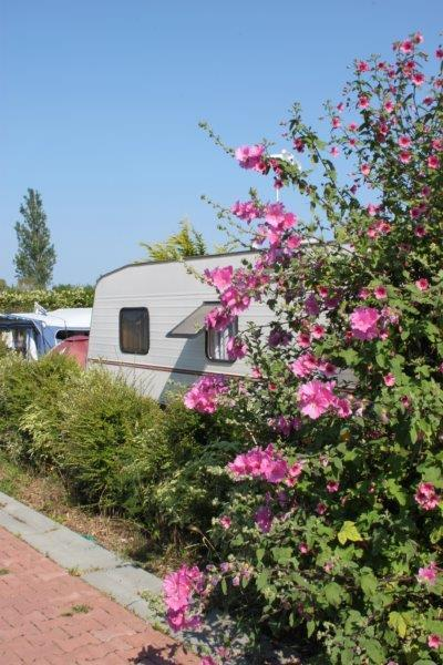 Camping Do Mi Si la Mi, Quiberon, Morbihan