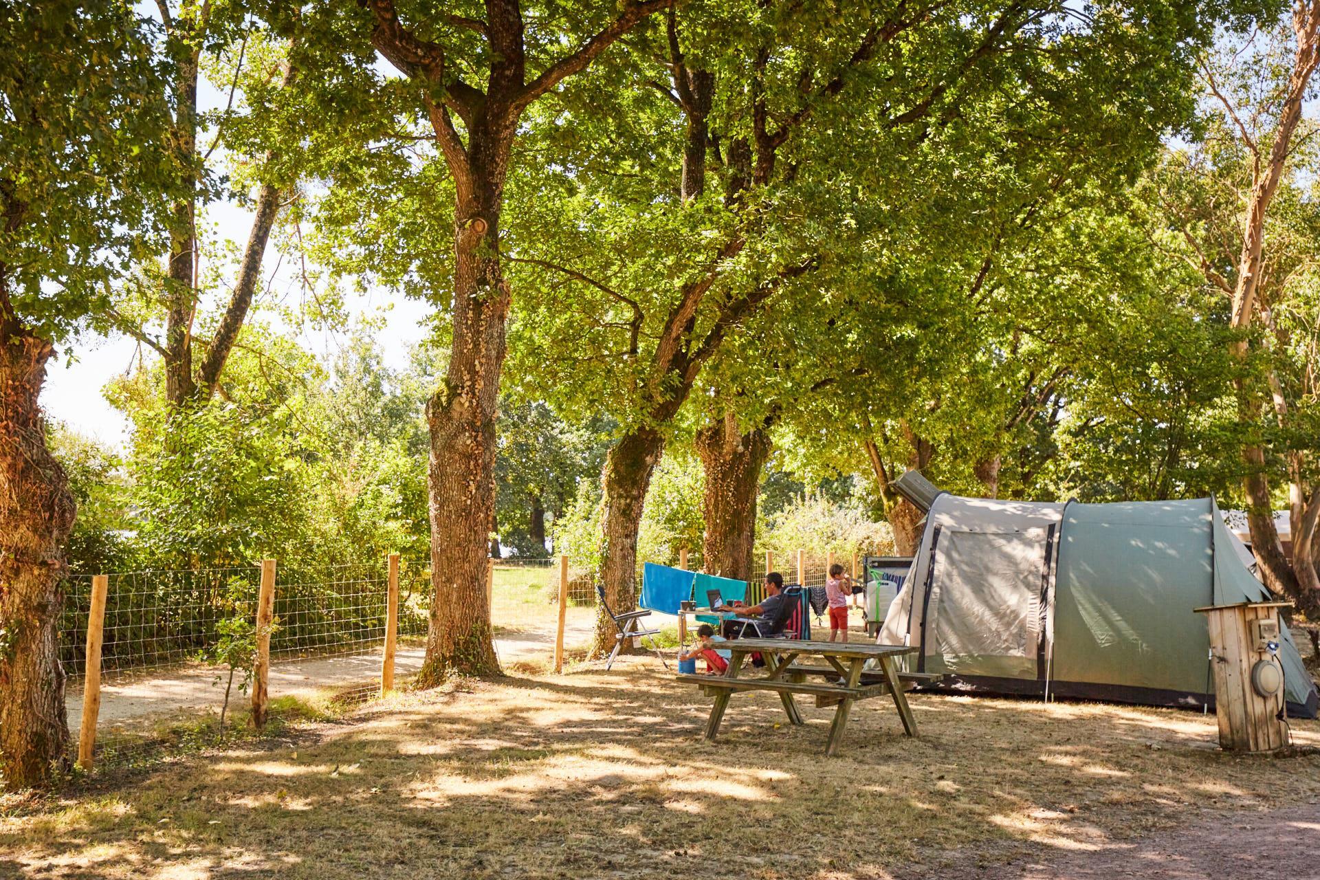 Emplacement - Forfait Privilège (1 Tente, Caravane Ou Camping-Car / 1 Voiture / Électricité 16A). Grand Emplacement Avec Vue Sur Lac - Camping Du Lac de la Chausselière