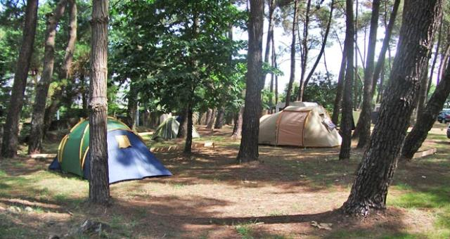 Emplacement - Emplacement Passage - Camping Le Fort Espagnol