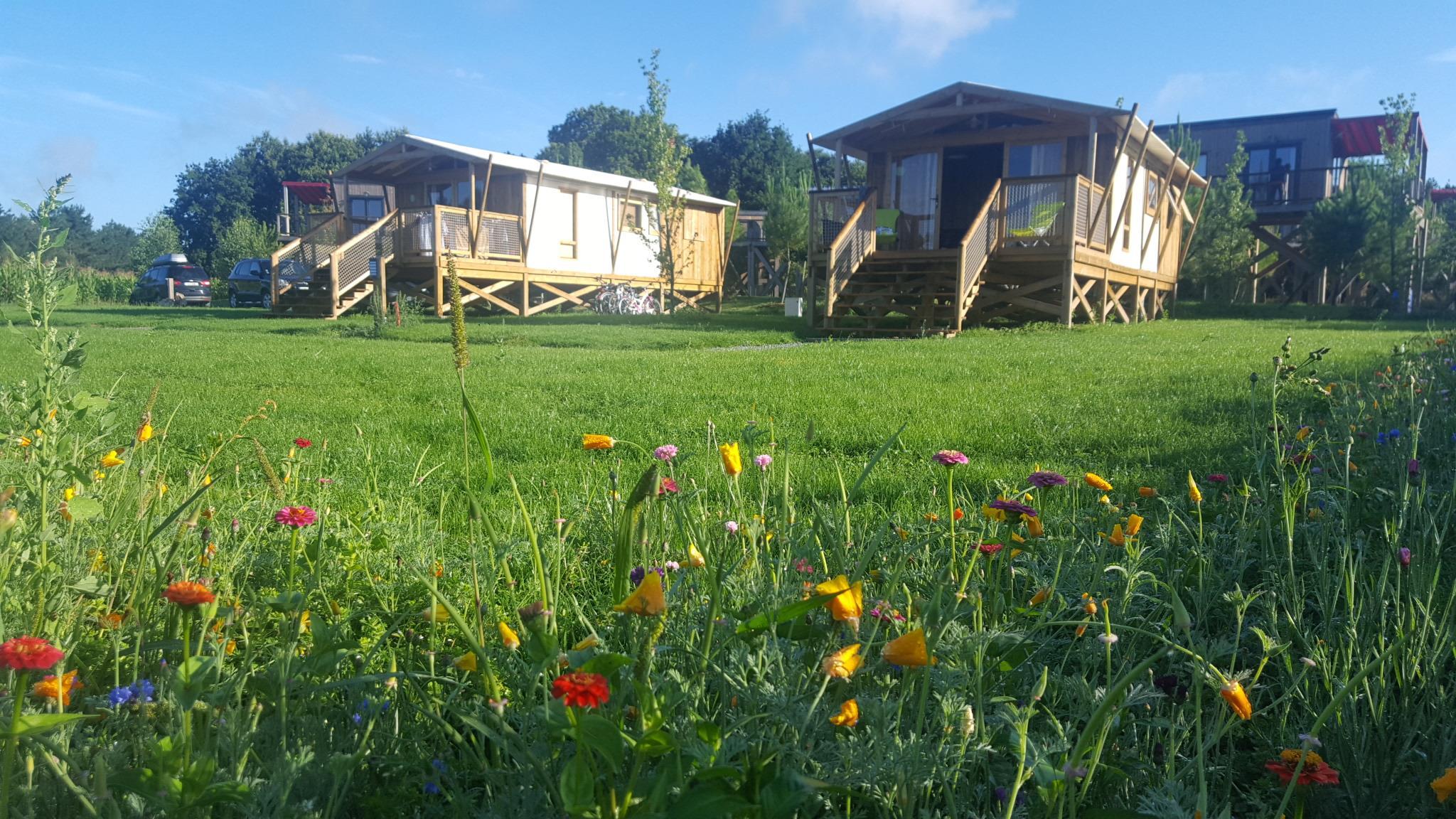 Cabane Lodge Premium 43m² (2 chambres) dont terrasse semi-couverte 11m²