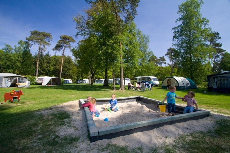 Camping De Kleine Wolf - Stegeren