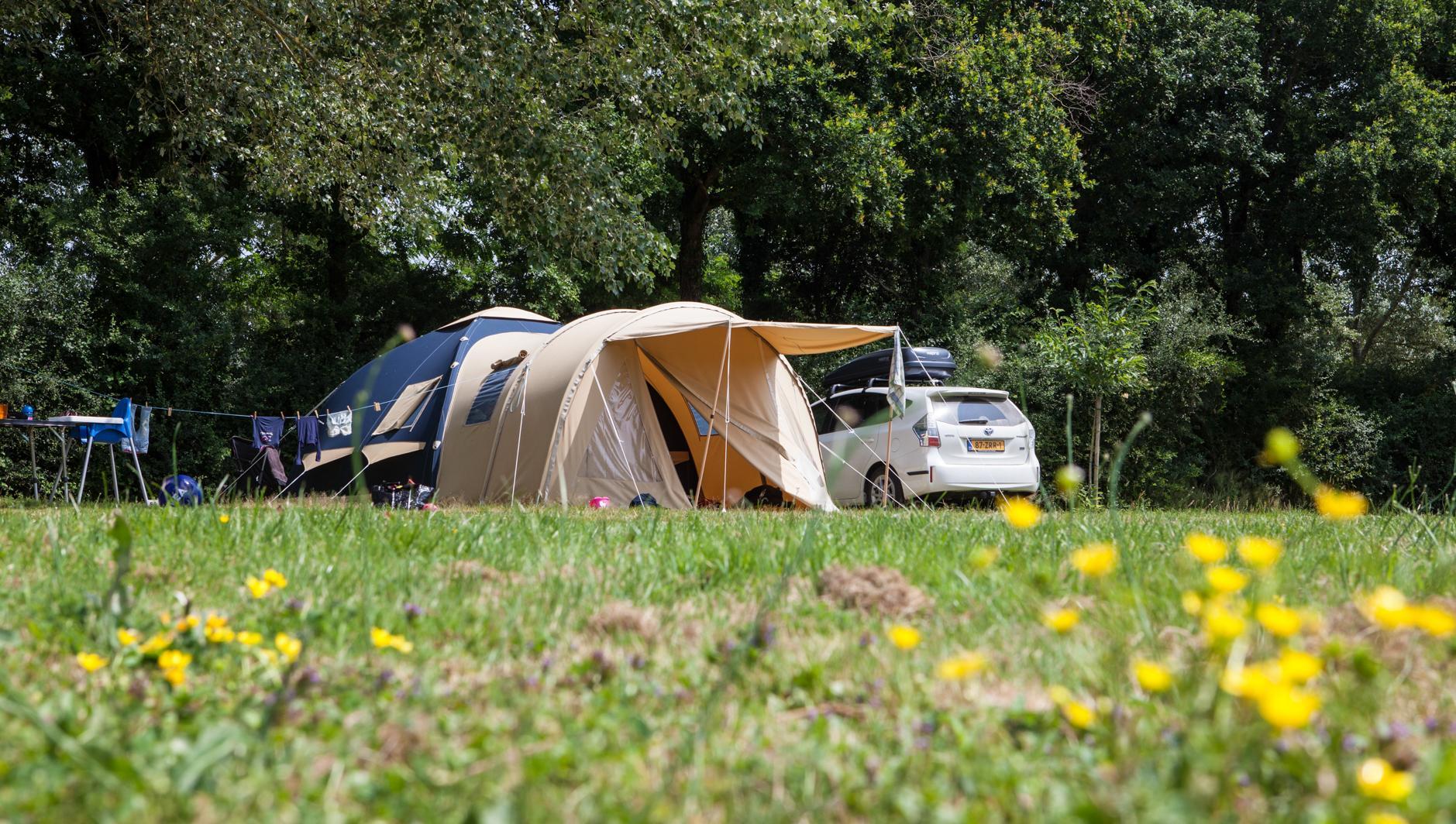 Emplacement - Standard 160-250M² Tente - Village de la Guyonnière