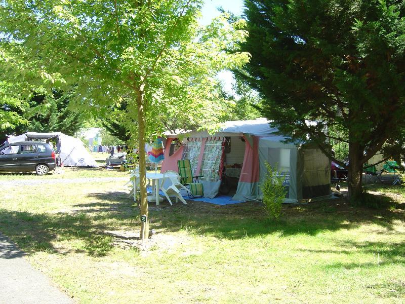 Emplacement - Emplacement Électrifié - Camping L'Arbre d'Or
