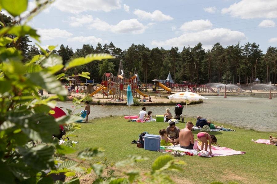 Camping De Lilse Bergen - Gierle