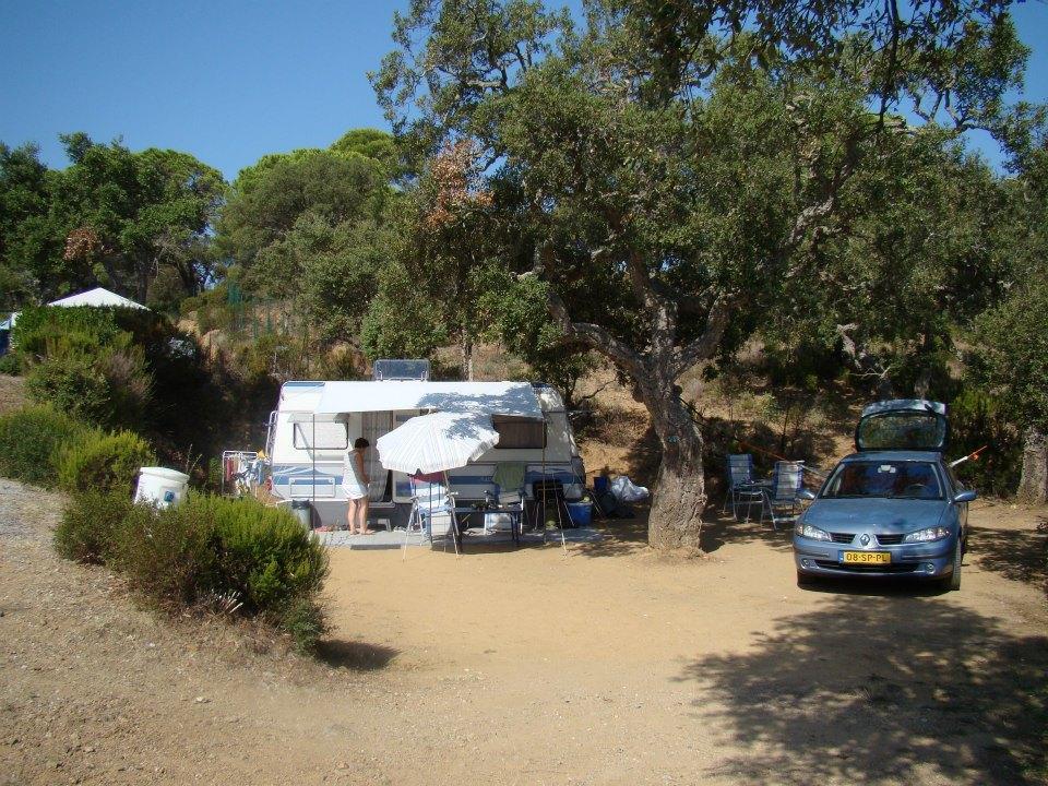 Emplacement - Emplacement Caravane Ou Caravane Pliante / Tente + Voiture - Camping Les Lauriers Roses