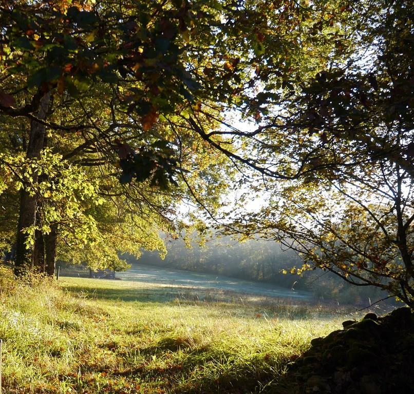 Camping Lac Aux Oiseaux, Martiel, Aveyron