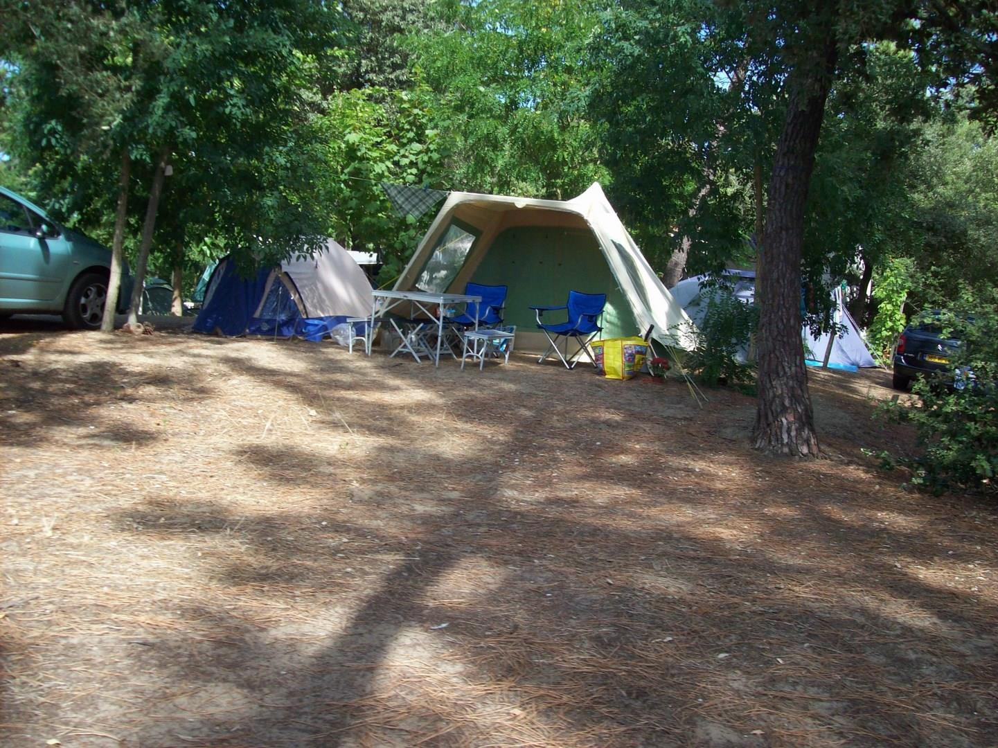 Emplacement - Emplacement Confort - Camping-Club Les Pins