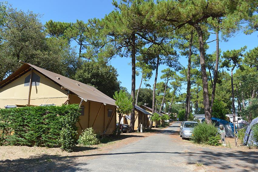 Location - Safari Lodge 6 / 2017 / À Étage - Camping-Club Les Pins