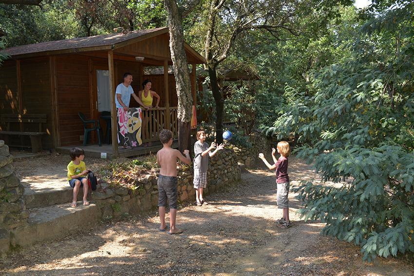 Location - Chalet Bois 2 Pers 18M² -  Terrasse Semi-Couverte (+ 13 Ans) - Camping Les Albères