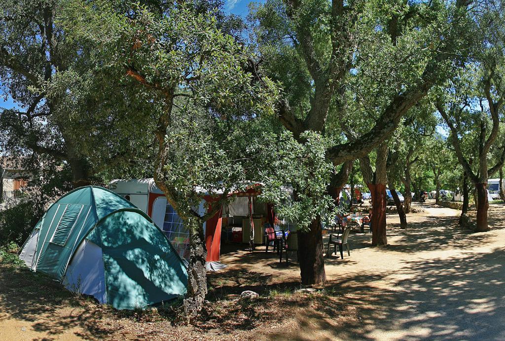 Emplacement - Forfait 3 : Emplacement + Tente Ou Caravane Ou Camping-Car + Véhicule + Électricité 16A (+Frigo+2Velos+Bbq+1 Ticket Wifi) - Camping Les Albères