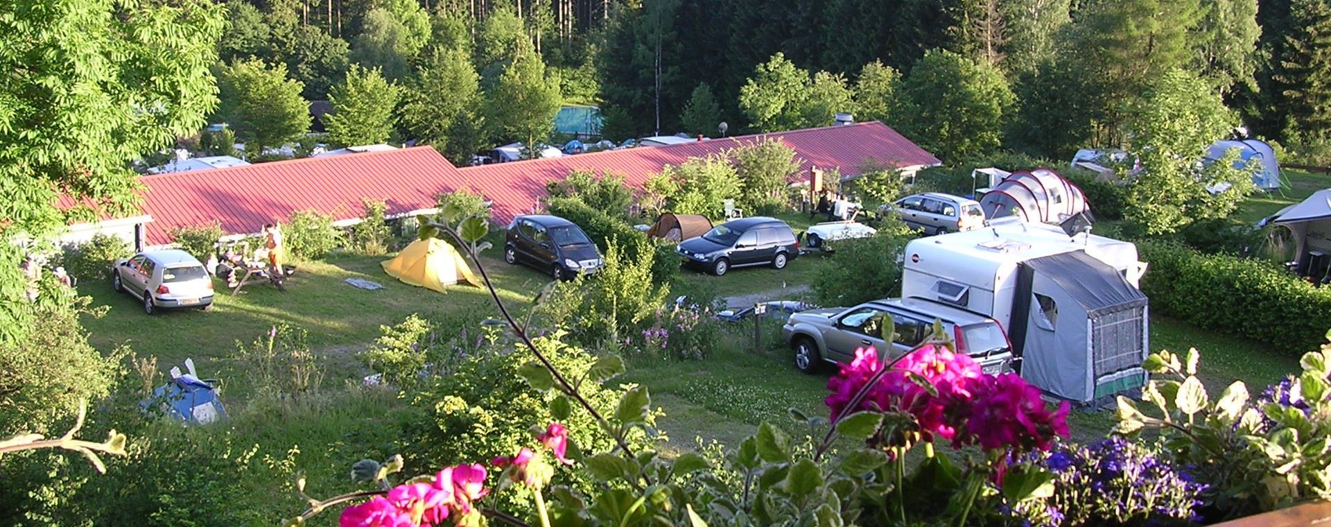 Emplacement - Emplacement + 1 Voiture + Tente / Caravane - Campingplatz Am Bärenbache