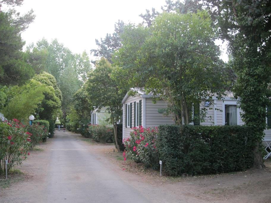 Camping le Rebau, Montblanc, Hérault