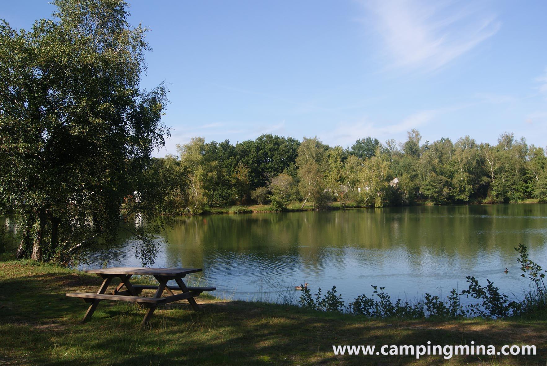 Emplacement - Forfait Privilège (1 Tente, Caravane Ou Camping-Car / 1 Voiture / Électricité 10A) ) + Sur L'étang - Camping Les Étangs Mina
