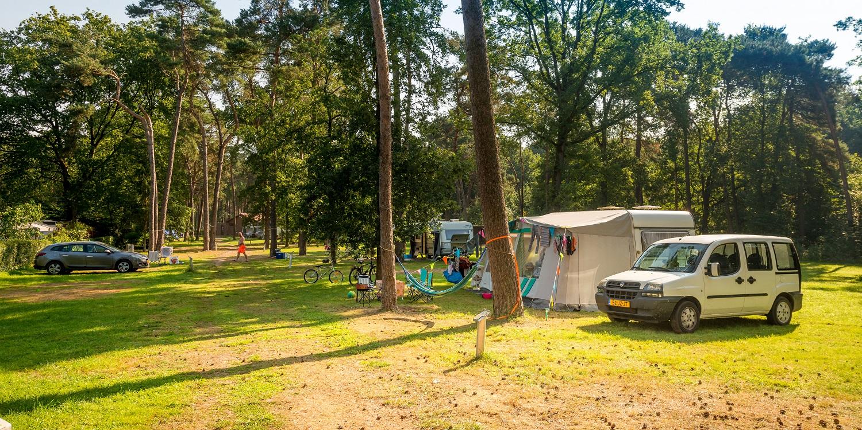 Emplacement - Emplacement 120 M2 - Camping Goolderheide