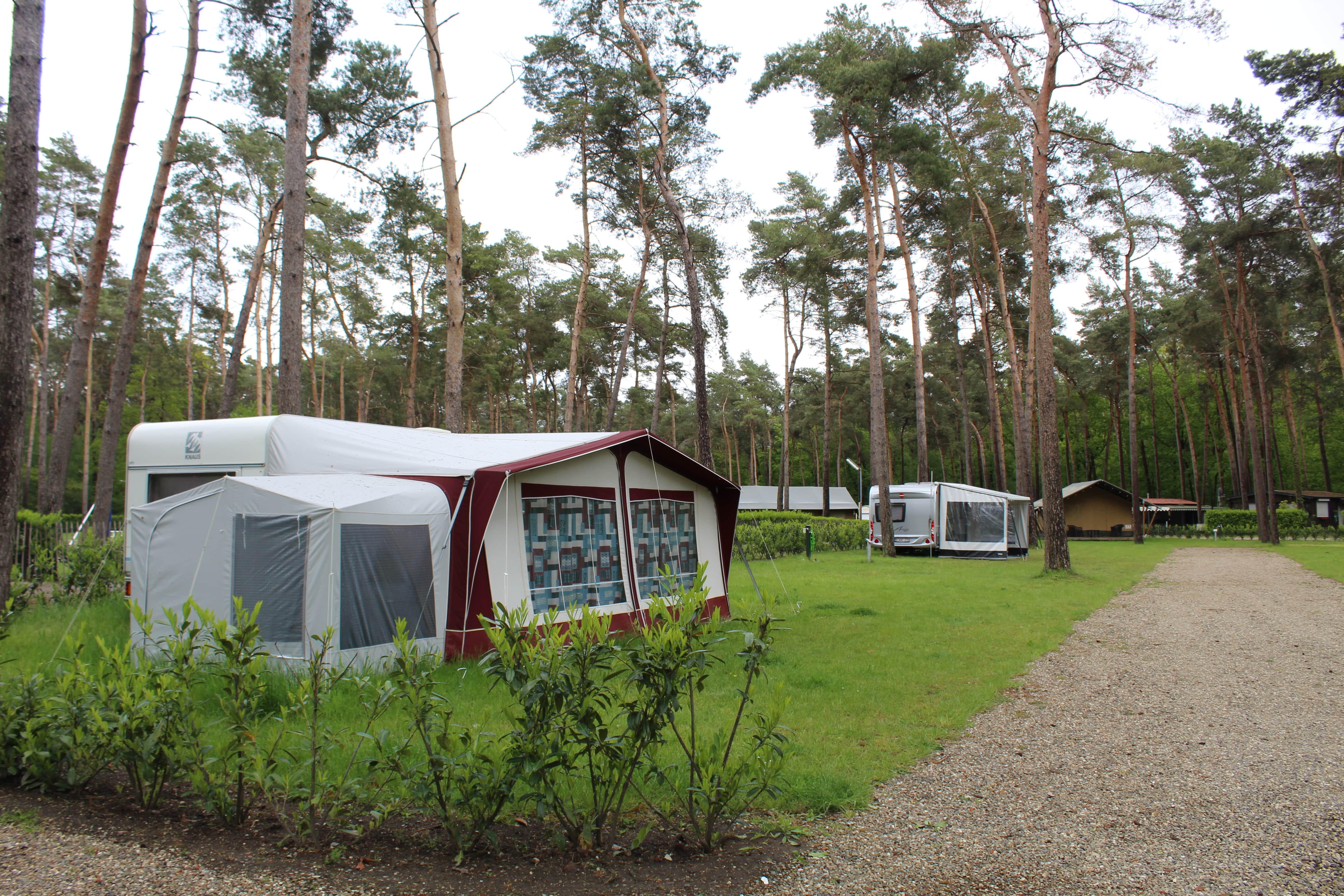 Emplacement - Emplacement Plus - Camping Goolderheide
