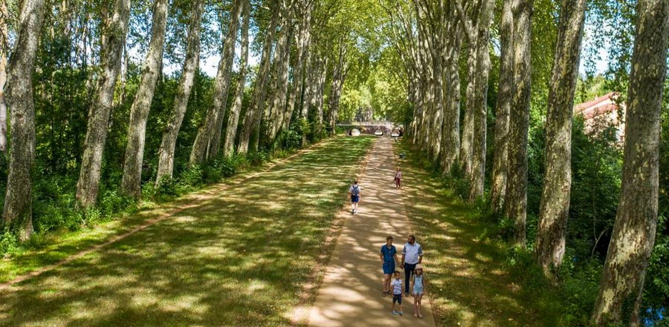 Activités Camping Robinson - Bourges