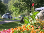 Camping Le Schlossberg - Kruth