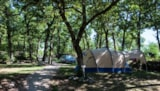 Pitch - Nature Package (1 tent, caravan or motorhome / 1 car) - Castel Domaine De La Faurie