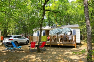 Mobile Home Lounge - 2 Bedrooms