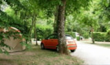Pitch - Nature Package (1 Tent, Caravan Or Motorhome / 1 Car) - Camping De LA PLAGE à St Cirq Lapopie