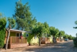 Rental - Mobile home C20 (4 adults+1 child+baby) - Camping La Pineda de Salou