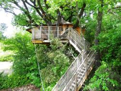 Tree House 24M² Premium 1 Bedroom / Terrace