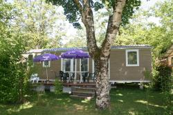Cottage Family Prestige, 3 Kamers  With Tv Included