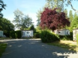 Rental - Bungalow BK 17m² - 2 bedrooms - without toilet block - Camping Le Pont Rouge