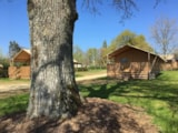Rental - Lodge with wooden terrace  x 6 - Glamping Sainte-Suzanne
