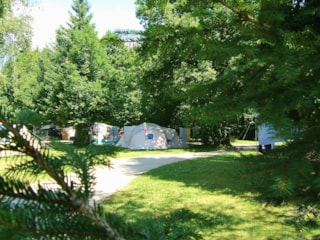 Family Package (2 Adults + 2 Children (-12 Years Old) + Caravane/Tent + Car)