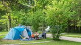 Pitch - Family Package (2 Adults + 2 Children (-12 Years Old) + Caravane/Tent + Car) - Camping de la Forêt