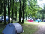 Pitch - Motorcycle/Bike Package (1 Person + 1 Tent + 1 Motorcycle/Bike) - Camping de la Forêt