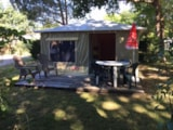 Rental - Canvas Bungalow Caraibe Without Toilet Blocks - Camping La Chesnays