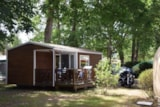 Rental - Mobile-home MONTANA - 2 bedrooms - Camping La Chesnays