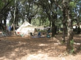 Pitch - Pitch 100 m² min with or without electric power - Camping Mille Etoiles