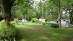 Establishment Camping de Montmaurin - MONTMAURIN