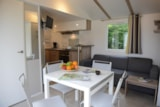 Rental - Mobil home privilege 4/5 people - Camping LA FORET***