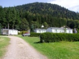 Rental - ECO Mobile home  24  m² (2 bedrooms) + Terrace - 2003 - Flower Camping VERTE VALLEE