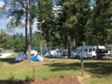 Pitch - Nature Package (1 Tent, Caravan Or Motorhome / 1 Car) - Flower Camping Les Murmures du Lignon