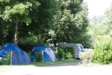 Pitch - Pitch tent or caravan - Camping Le Clupeau