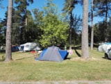 Pitch - Package Bike without electricity - Camping du Lac