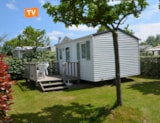 Rental - Mobilhome Optima 20 M² - Camping Les Logeries