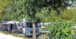 Emplacement - Emplacement 100m² + camping-car - Camping Les Vignes